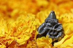 Mini Ganesha made from brass among of yellow marigold flower. Mini Ganesha made from brass among of yellow marigold flower, the son of Uma Devi god in Hinduism royalty free stock images