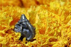 Mini Ganesha made from brass among of yellow marigold flower. Mini Ganesha made from brass among of yellow marigold flower, the son of Uma Devi god in Hinduism royalty free stock photo