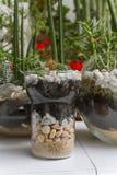 Mini garden Stock Photo