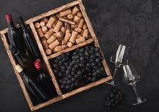 Mini garrafas do vinho tinto e de vidros vazios com as uvas escuras com cortiça e abridor dentro da caixa de madeira do vintage n fotografia de stock