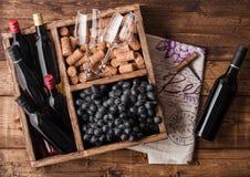 Mini garrafas do vinho tinto e de vidros vazios com as uvas escuras com corti?a e abridor dentro da caixa de madeira do vintage n imagem de stock royalty free