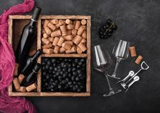 Mini garrafas luxuosas do vinho tinto e de vidros vazios com as uvas escuras com cortiça e corkscrew dentro da caixa de madeira d fotos de stock