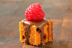Mini gingerbread square with melted chocolate. Bite-sized gingerbread square with liquid chocolate and fresh raspberry on top Stock Images