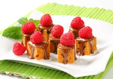 Mini gingerbread squares with melted chocolate. Bite-sized gingerbread squares with liquid chocolate and fresh raspberry on top Stock Photo