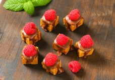 Mini gingerbread squares with melted chocolate. Bite-sized gingerbread squares with liquid chocolate and fresh raspberry on top Stock Photos