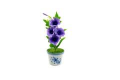 Mini gliniany kwiat w garnku Zdjęcia Royalty Free