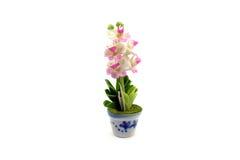 Mini gliniany kwiat w garnku obrazy royalty free