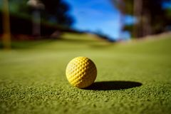 Mini Golf amarela a bola na grama verde no por do sol Imagens de Stock Royalty Free