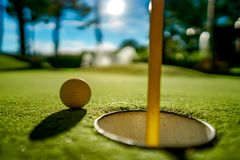 Mini Golf yellow ball on green grass at sunset. Mini Golf yellow ball on green grass sunset royalty free stock photography
