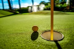 Mini Golf yellow ball on green grass at sunset. Mini Golf yellow ball on green grass sunset royalty free stock photo