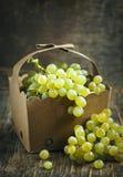 Mini grapes in basket royalty free stock image