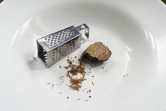 Mini grater and black truffle. On white plate Stock Image