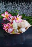 Mini grupo de gel do banho de espuma e do chuveiro no shell do búzio do mar Fotografia de Stock