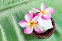 Mini grupo de sabão de banho do chuveiro com o frangipani das flores em vagabundos verdes Foto de Stock