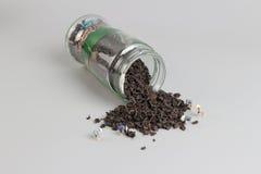Mini gruppo di schiaffo con gettato di tè Fotografie Stock