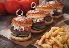 Mini- hamburgare med franska småfiskar Arkivbilder