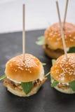 Mini hamburgers de thon et verticale blanche de fromage Photo libre de droits