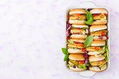 Mini hamburguesas con la hamburguesa del pollo, queso y verduras Foto de archivo