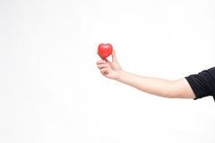 Mini Heart op hand Stock Foto