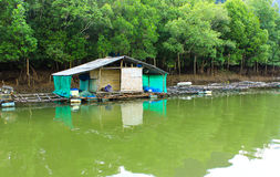 Mini house and stone mountain in the mangrove swamp Royalty Free Stock Photography