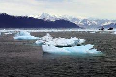 Mini iceberg Imágenes de archivo libres de regalías