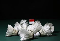 Mini Indonesia flag stick on the heap of used shuttlecocks on green floor of Badminton court. With dark black background royalty free stock photos