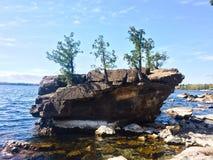 Mini Island with Mini Trees Royalty Free Stock Image