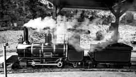 Mini- järnväg Royaltyfria Bilder
