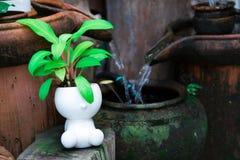 Mini jardin Images stock
