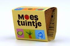 Mini jarzynowy ogród od Holenderskiego sklepu spożywczego Albert Heijn AH Fotografia Royalty Free