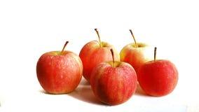 mini kara della mela cinque Fotografia Stock Libera da Diritti