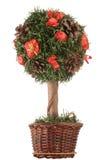 Mini Kerstmisboom Royalty-vrije Stock Foto