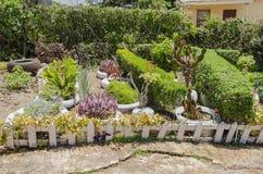 Mini Landscaping imagens de stock royalty free