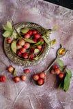 Mini-maçãs vermelhas em uma colher fotografia de stock