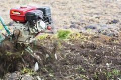 mini macchine di lavorazione Aratura della terra Orto domestico Immagine Stock