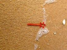 Mini majic Toy on the beach Royalty Free Stock Photo