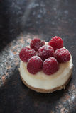 Mini malinowy cheesecake obraz royalty free