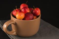 Mini manzanas en taza en fondo negro Foto de archivo libre de regalías