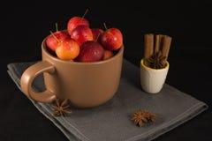 Mini manzanas en taza en fondo negro Fotos de archivo libres de regalías