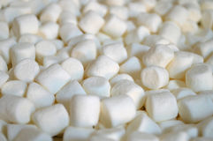 Mini marshmallows. Close up of the white plump heap of marshmallows Stock Image