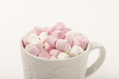 Mini Marshmallows. Cup full of pink and white mini marshmallows Royalty Free Stock Image