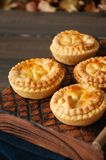 Mini meat pies from flaky dough Royalty Free Stock Photos