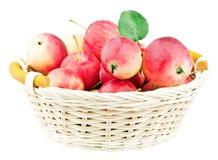 Mini mele rosse in cestino Fotografia Stock