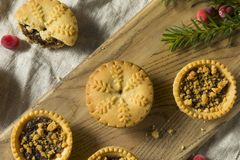 Mini Mincemeat Pies casalingo fotografie stock