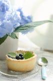 Mini mirtilli acidi con il bello fiore Immagine Stock