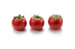 Mini modelo do tomate Imagem de Stock Royalty Free