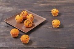 mini muffin deliziosi di sapore del cioccolato fotografia stock libera da diritti