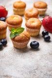 Mini- muffin för sommar med bäret royaltyfri fotografi