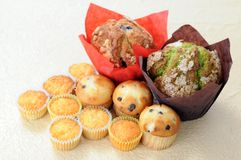 Mini muffins. Big and some mini muffins on table Stock Photos