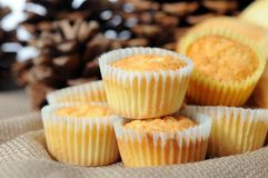 Mini muffins. Pines and some mini muffins on table Royalty Free Stock Photography